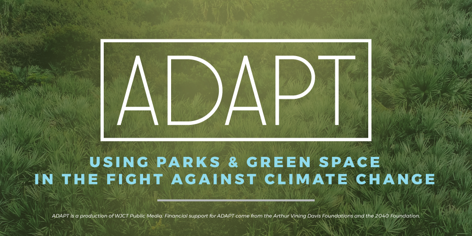 ADAPT: Using Parks & Green Space In The Fight Against Climate Change